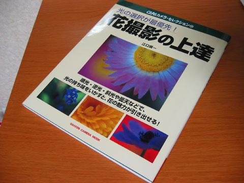 20040817-1.jpg