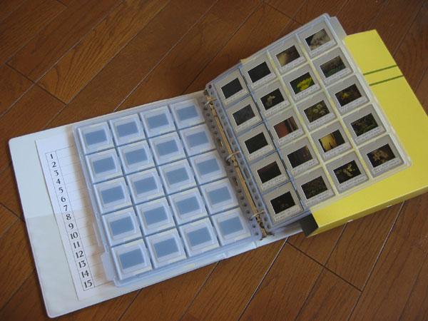 20050727-1.jpg