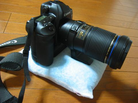 20060219-3.jpg