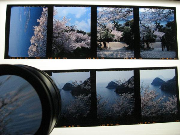 20070415-2.jpg