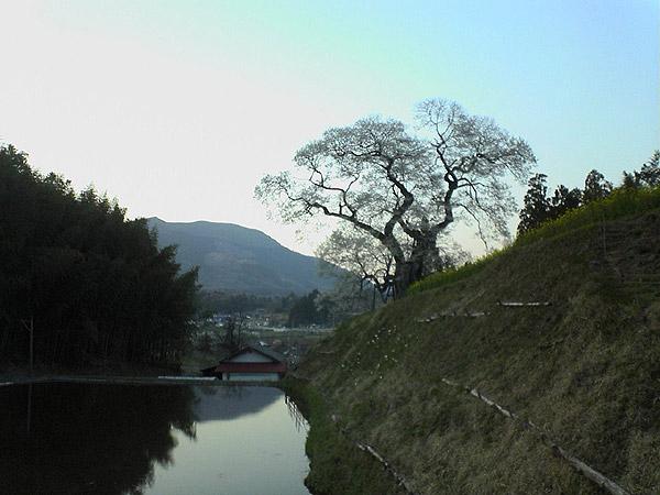 20070419-1.jpg