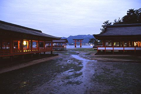 20080213-1.jpg